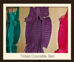 tinted Crocodile Skin